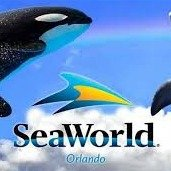 From $169.99Sea World 5 Parks Unlimited Visits