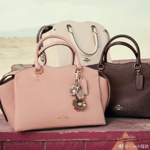 8f8a8604b99c Drew Handbags  Coach Last Day  30% Off - Dealmoon