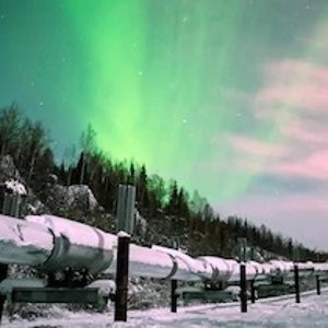 As low as $102 + Extra 25% Off Selected ProductsEnding Soon: Alaska Sightseeing and Tours