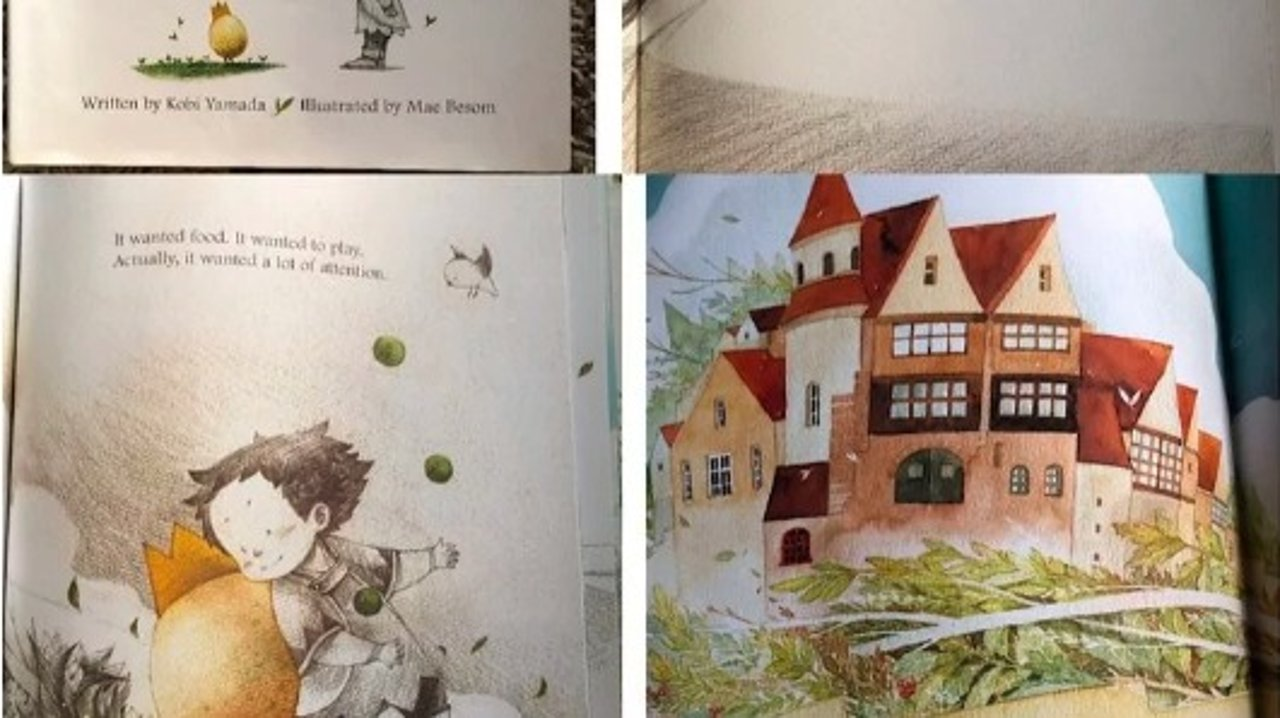 聊几本特别走心的童书(如何帮小宝贝形成正确的价值观)