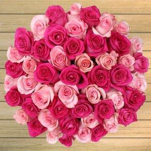 $49.99 免运 + 可选2月14日送达非会员也可购买:Costco 精选 50支玫瑰预定 多款可选