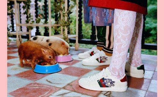 GUCCI 美衣美鞋 满额8.5折GUCCI 美衣美鞋 满额8.5折
