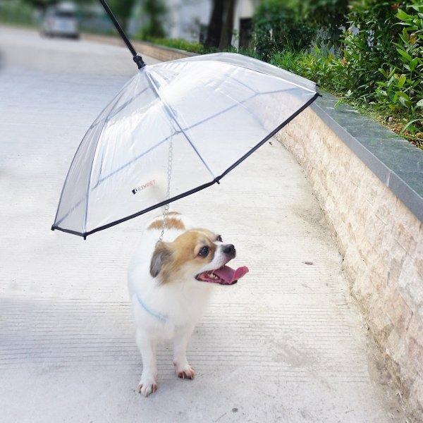 LesyPet 狗狗雨伞