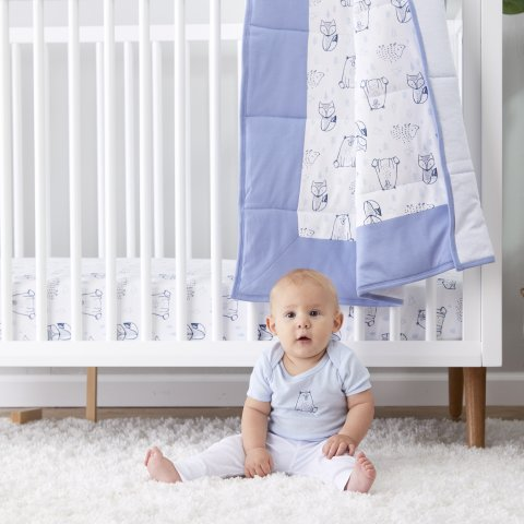 As Low as $11.99Little Star Baby Organic Cotton Bedding Sale