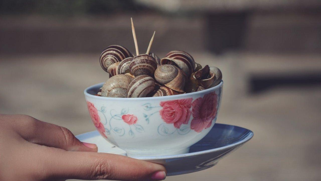 巴黎哪家餐厅的蜗牛最好吃?法国人都会打卡的蜗牛餐厅在这里!