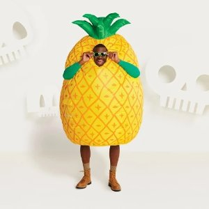 f6c59ec28964 Adult Air-blown Inflatable Pineapple Halloween Costume - Hyde and Eek!  Boutique™