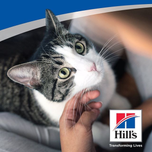Save up to $10Hill's Science Diet Cat Food on Sale