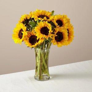 12枝蜂蜜向日葵+花瓶