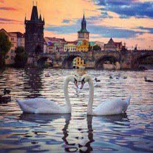 From $480 RTNew York to Prague Czech Republic Airfare