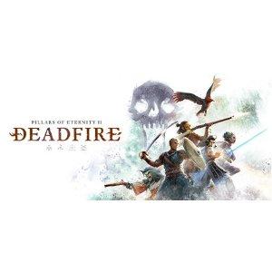 Pillars of Eternity II: Deadfire - PC Steam