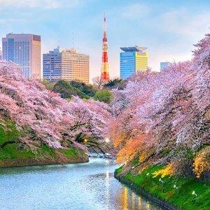 直飞往返$483起  Skytrax全球最佳航空新加坡航空 洛杉矶--日本东京 往返机票好价