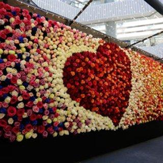 这个情人节,你们需要一束独一无二的永生花丨The Only Roses众测