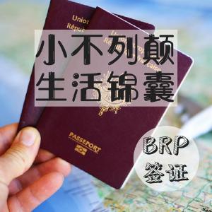 BRP 是什么?丢了怎么办?留英秘籍 | 英国BRP签证卡知识大全