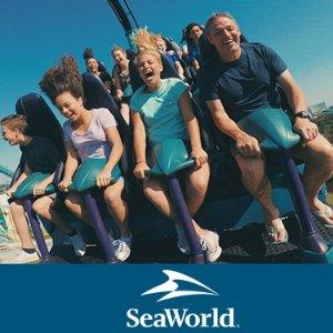 $84.99  全天餐饮免费奥兰多海洋世界单日门票促销