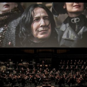 As low as $43.58Harry Potter in Symphony Concert