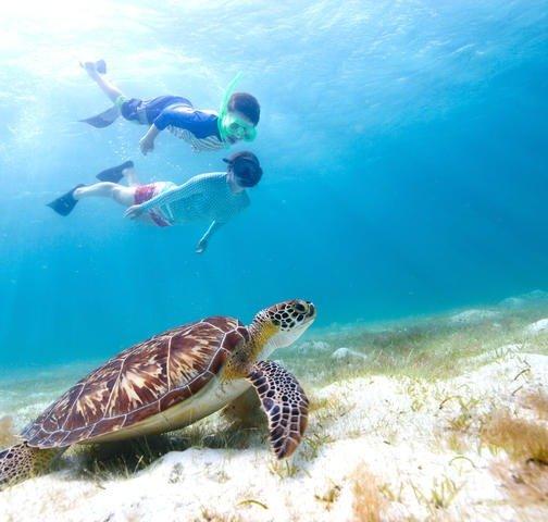 夏威夷欧胡岛旅行通票 含35+景点活动