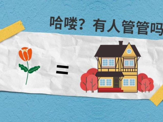一朵花买一栋豪宅 | 人类史上第一...