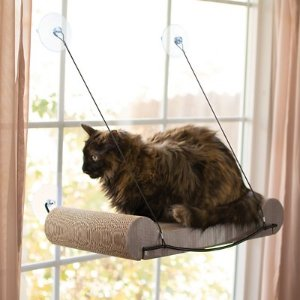 K&H Pet Products EZ Mount Window Scratcher Kitty Sill, Tan - Chewy.com