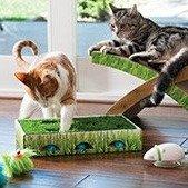 店内取货享7.5折Petco 全场猫咪玩具热卖 低至$0.74