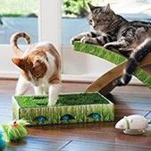 店内取货享7.5折Petco 精选猫咪玩具促销热卖 低至$0.38