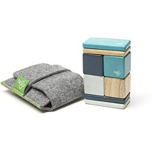 Amazon.com: Tegu 8 Piece Pocket Pouch Magnetic Wooden Block Set, Blue: Toys & Games