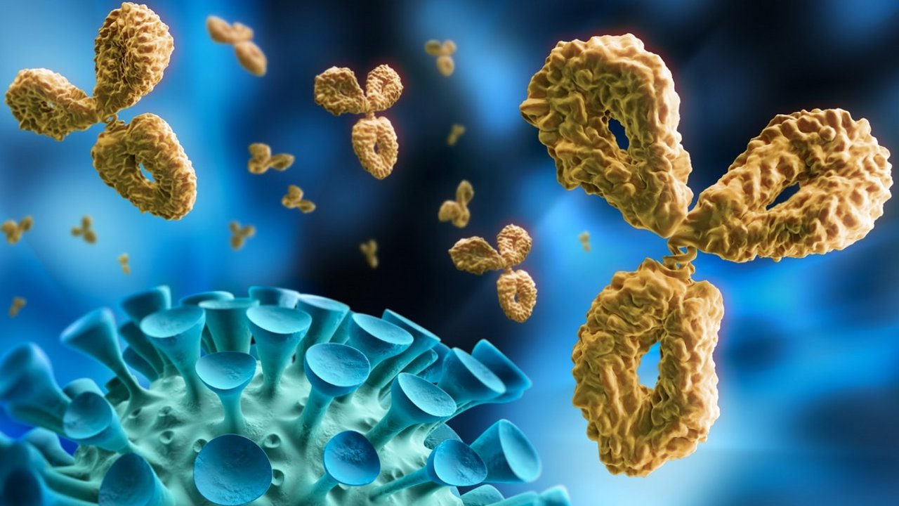 什么是ADE(抗体依赖增强效应)?新冠病毒变种/新冠疫苗会引发ADE效应吗?