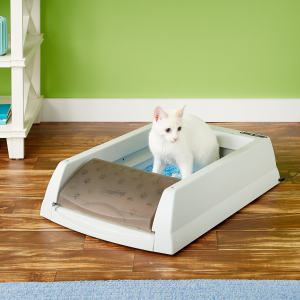 Up to 50% OffChewy Cat Litter & Litter Box on Sale