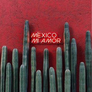 往返$235起 2020年年初日期美国多地--墨西哥城往返机票好价