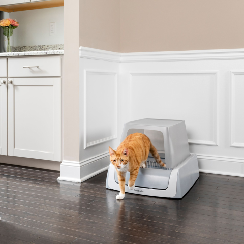 Up to 50% OffPetSmart Selected Cat Litter Boxes on Sale