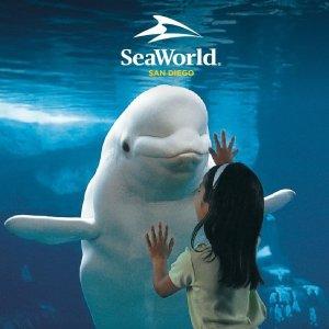 低至6.8折 $63.99/人加州圣地亚哥 SeaWorld 单日门票促销