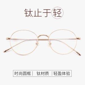 VK 1640 Titanium Glasses