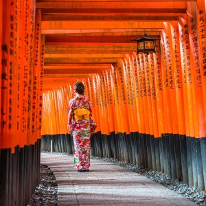From $12998- or 9-Day Japan Tour
