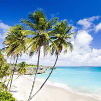 加勒比海航线