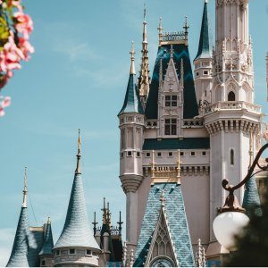 Up to 50% Off + Extra $25 Off11.11 Exclusive: Best of Orlando Hot Theme Park Attraction Saving Upgrade