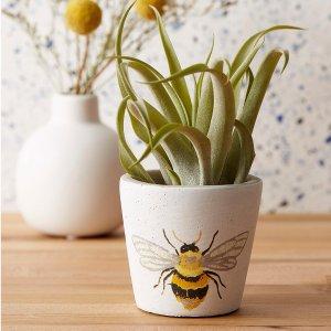 Simons Maison小蜜蜂 planter