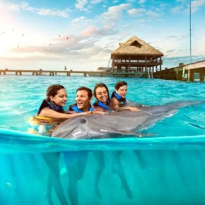 As low as $69 + extra $65 Off Selected OptionsCancun All-Inclusive Go City Pass Sale
