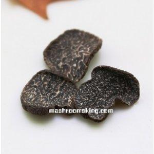 Wide Black Truffle
