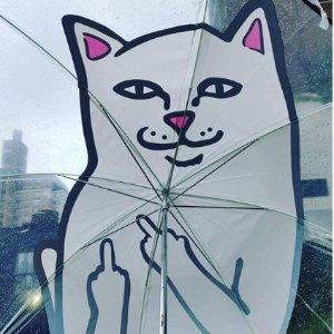 低至5折 + 满额免邮 $29收爆款T恤HBX官网 潮流设计师品牌促销 竖中指的猫也参加