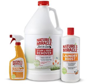 Nature's Miracle Dual Action Hard Floor Stain & Odor Remover, 24-oz bottle - Chewy.com