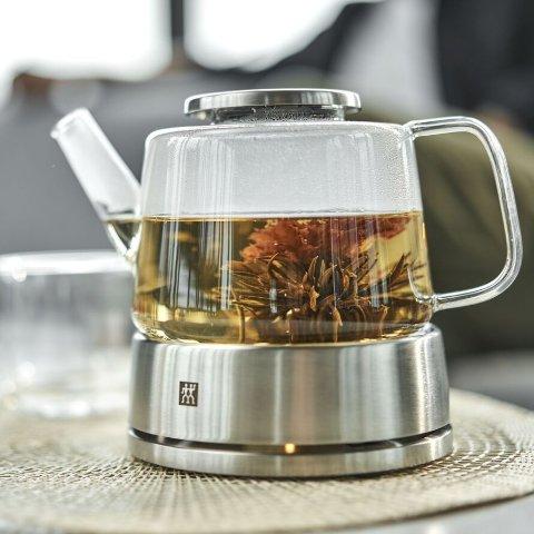 玻璃咖啡/茶壶
