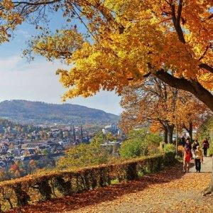 快趁降温前去拍照打卡吧秋季来临 德国六大赏枫名胜及周边好去处 领略绝美枫叶秋景