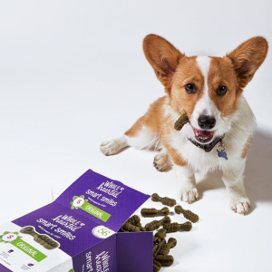 Up to 25% OffPetco Dog Dental Care Products on Sale