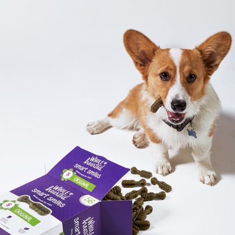As low as $2.5Petco Dog Dental Care Products on Sale