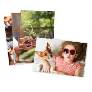 $0.09 Photo Prints – Matte – Standard Size (4x6)