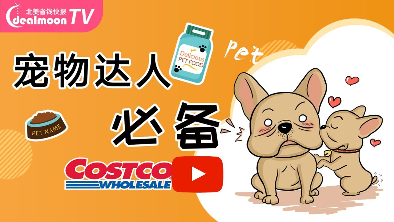 深扒Costco宠物用品!!!这8款猫狗用品买到就是赚到!