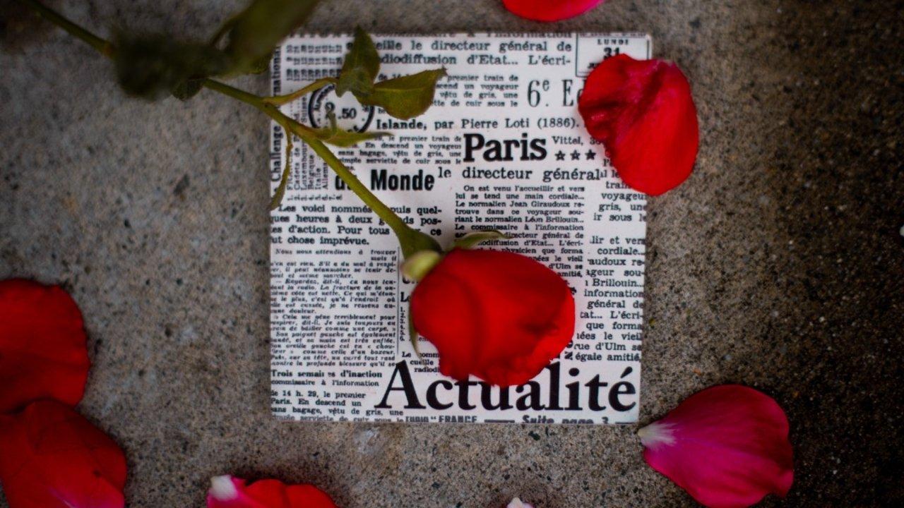 法语版花语如何表达 | 教你在逢年过节让送花变得更有意义,附购买攻略