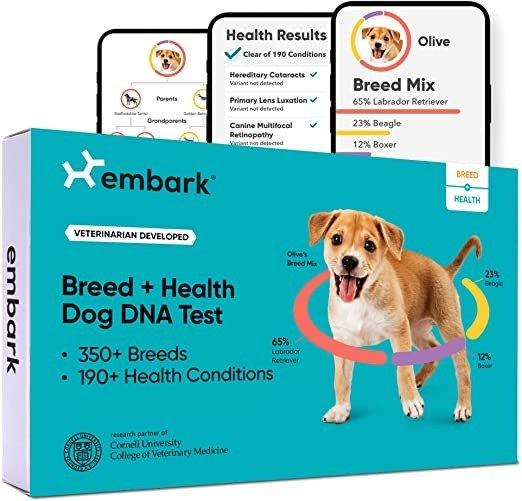 狗DNA测试及健康筛查