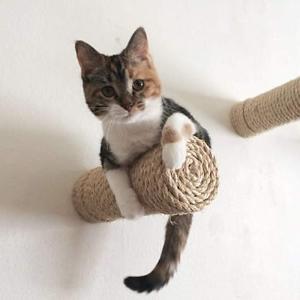 低至6折Petco 墙壁猫窝、猫爬架、猫跳板等热卖