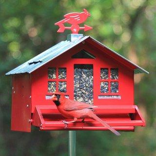 $7.25起限今天:Amazon 精选Perky Pet 鸟类喂食器热卖