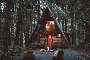 The Little Owl Cabin at Mt. Rainier - Cabins for Rent in Packwood, Washington, United States